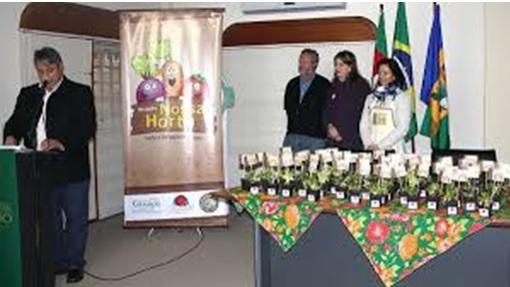 Proyecto de huertos escolares: lanzamiento del proyecto en 2004.