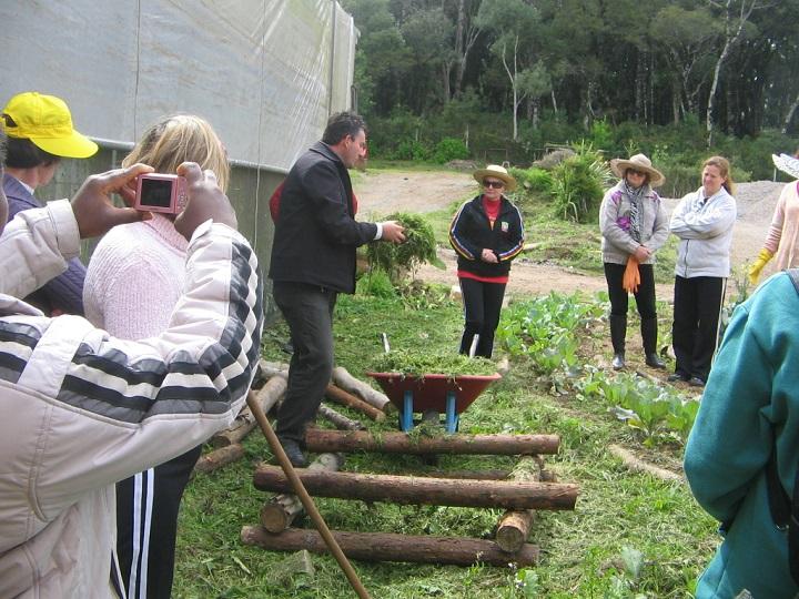 Proyecto de huertos escolares: entorno de huerto
