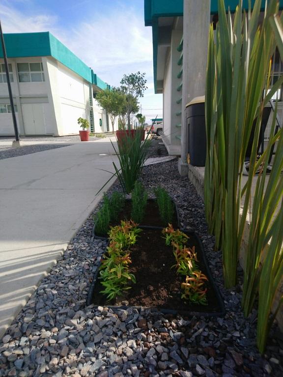 Projeto Sustenta ECO Jardinería